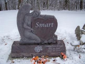 smart-arkspings