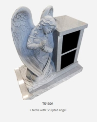 ts1301-2-niche-with-schulpted-angel